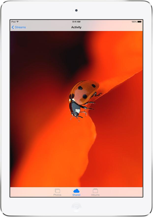 Apple iPad 5 design